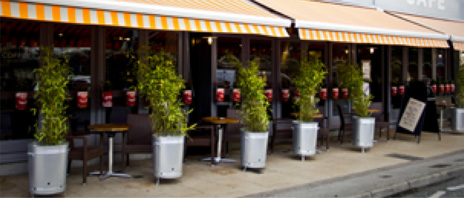 An image showing mustard yellow and white striped awnings on a commercial restaurant