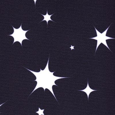 Blackout Blinds For Dakstra Roof Skylight Windows Night Sky Black Close Up